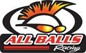 Picture of 95-02 BUELL TUBE FRAME ALL BALLS RACING SWINGARM PIVOT BEARING SET (2) TAPERED ROLLER BEARING ASSY OEM # 48300-60 ( # 22-1032 )