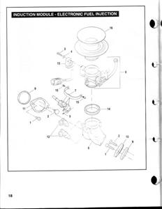 03-10 BUELL XB R/S/X SERIES 96-02 BUELL TUBE FRAME MODELS OEM BUELL INTAKE  MANIFOLD SEALS (2) ( # 26995-86B )
